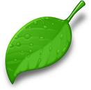 Yeşilişim
